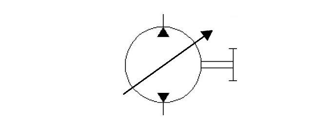 Bi-direction-variable-displacement-pump