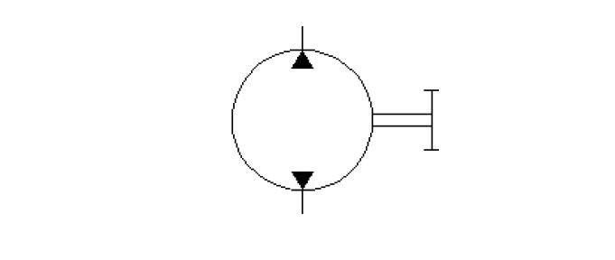 Bi-directional-fix-displacement-pump